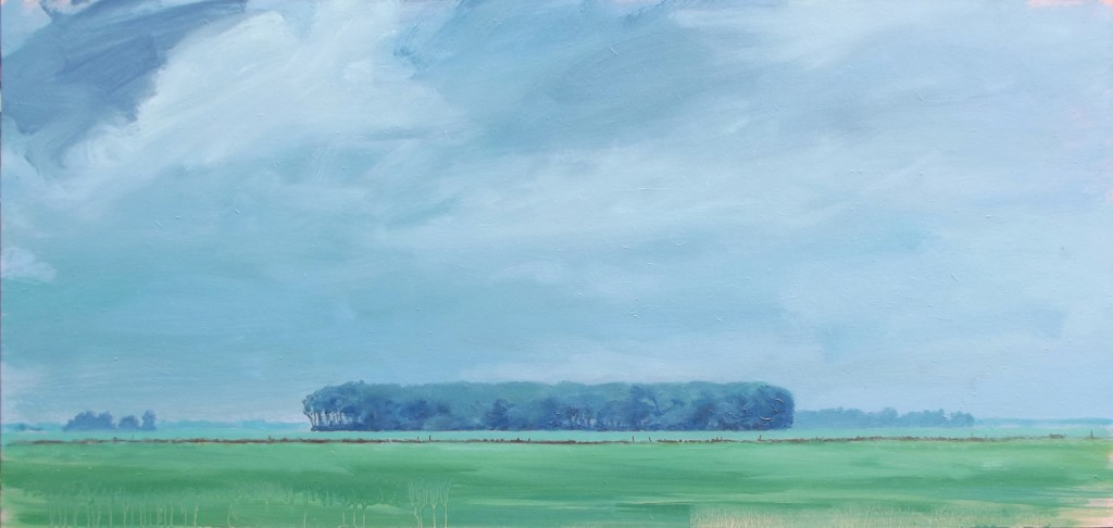 Bos aan de horizon